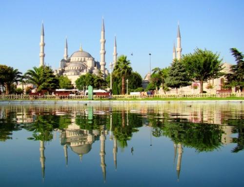 Турция или Египет?